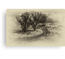 The Journey (Sepia) - Cootamundra,NSW - The HDR Experience Canvas Print