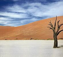 Tree by areyarey