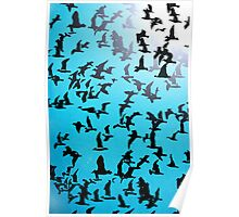 Set of silhouettes of birds on a blue background Poster