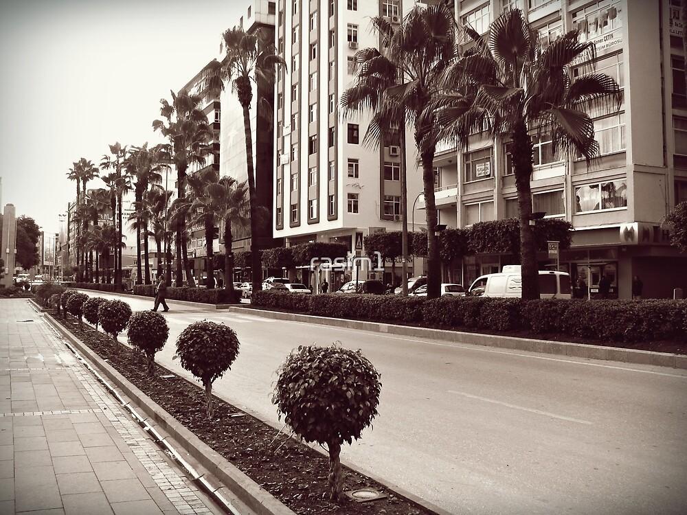 Ataturk Bulvari,Adana by rasim1