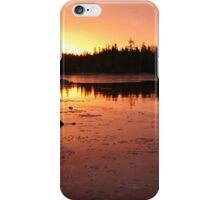 One year ends; another begins iPhone Case/Skin