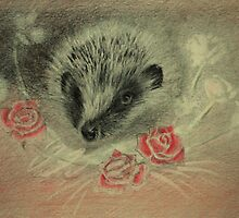 hedgehog and roses by Lynn Hughes