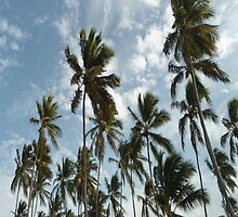 palm tree ipad case  by aredbubble