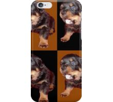 Rottweiler Puppy Isolated On Black and Tan Tile Pattern iPhone Case/Skin