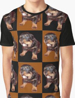 Rottweiler Puppy Isolated On Black and Tan Tile Pattern Graphic T-Shirt