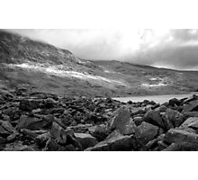 Best Left To Shepherds Photographic Print