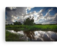 Cloud Bank Canvas Print