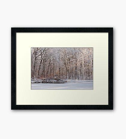 Fresh Coat Of Snow Framed Print