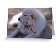 Ivan the Great Pyrenees Greeting Card