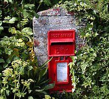 Cornish letterbox by Rachel Down