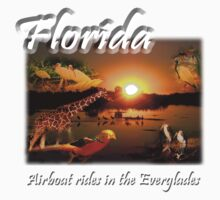 Florida (Airboat Rides in the Everglades) by jkartlife