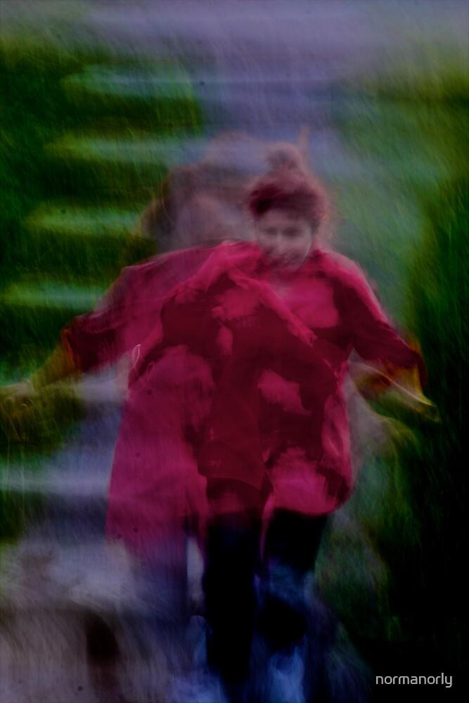 Running Ninja@1 by normanorly