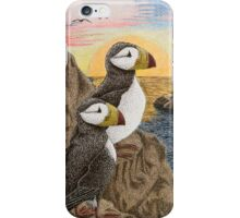 Puffins on Sunset Cliff iPhone Case/Skin