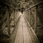 Bridge to the Wild by srhayward