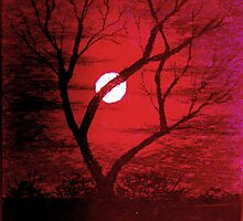 Moon thru trees in a red sky by artyfax