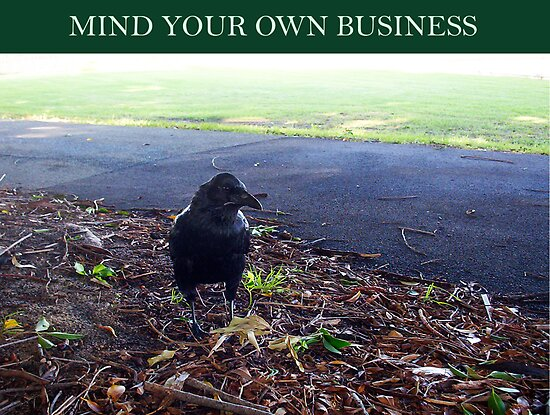 Mind Your Own Business 12 02 13 - Three by Robert Phillips