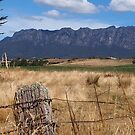 Mount Roland. Tasmania. by Esther's Art and Photography