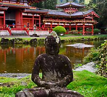 Garden Buddha by raymona pooler