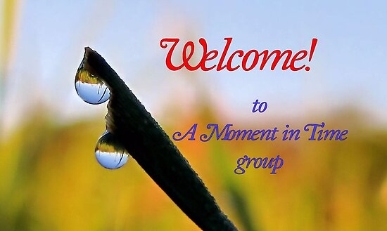 Banner AMIT Welcome by aprilann
