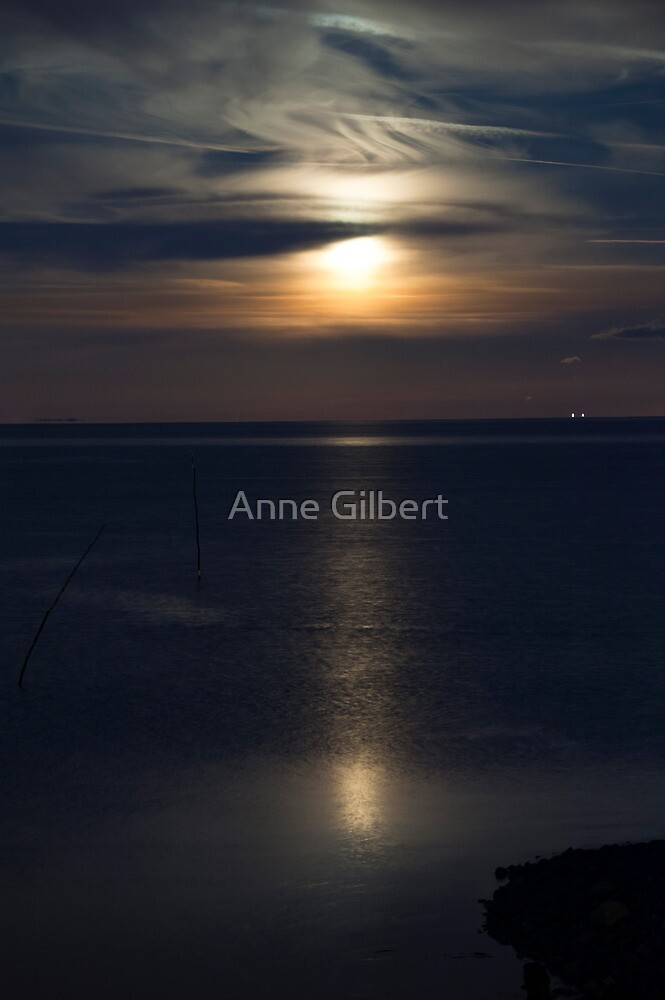Moon Rise by Anne Gilbert