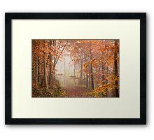 Mystic Woods Framed Print