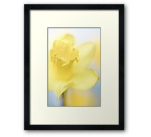 She shines so bright....  Framed Print