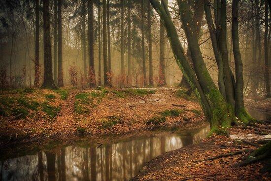 The red creek! by radonracer