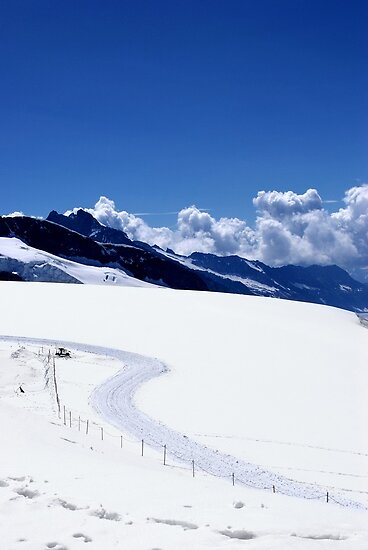Sled Tracks, Swiss Alps by AlisonOneL