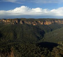 Evans Lookout, Blackheath, NSW. by Andy Newman