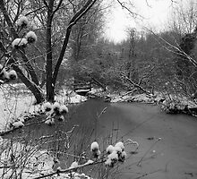Winter Scene by Lorna81