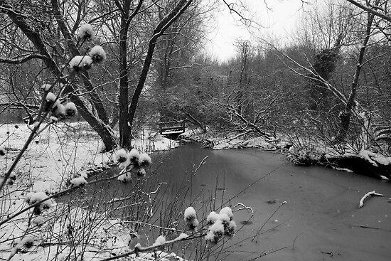 Winter Scene by Lorna81