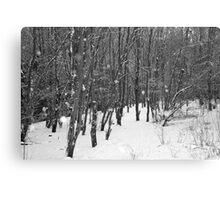 Narnia Canvas Print