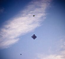 """Kites rise highest against the wind, not with it"" by Th3rd World Order"