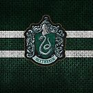 Slytherin 6 by Serdd