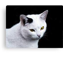 Cat Portrait VRS2 Canvas Print