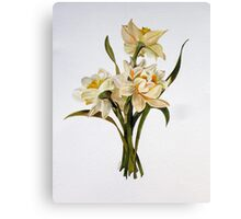 Double Narcissi Canvas Print
