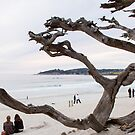 Beach at Carmel by Yukondick
