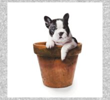 Potted Pooch One Piece - Long Sleeve