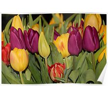 An Ocean Full Of Tulips III Poster