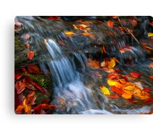 Leaves in the Stream Canvas Print