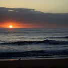 Sunrise with the Seagulls.. by debsphotos