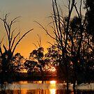 Wooloondool Sunrise by Mark Cooper