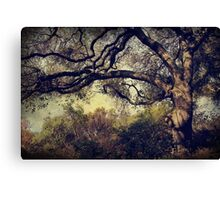 Just How it Ought to Be Canvas Print