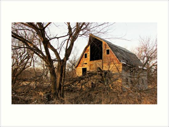 Days Gone By by Greg Belfrage