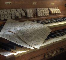 church organ by Nicole W.
