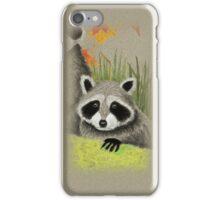 Fall Raccoon iPhone Case/Skin