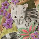 Genet cat by jkartlife