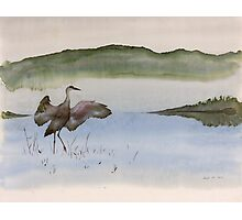 Crane in Fog Photographic Print