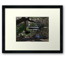 Bass Fishing Framed Print