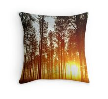 Sun In The Pines Throw Pillow